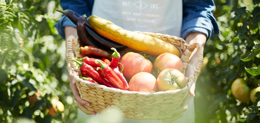 신선한 농산물